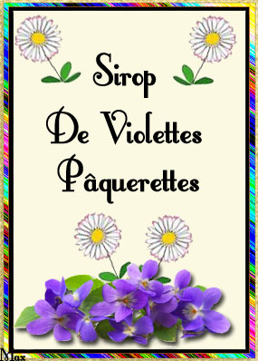 395246siropdeviolettespquerettes
