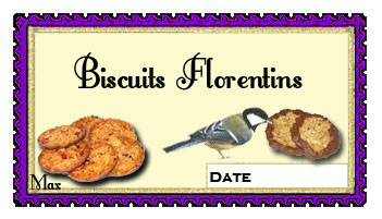 Biscuits florentins copie