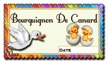 Bourguignon de canard copie